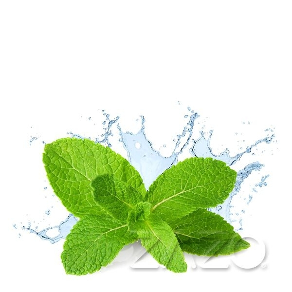 Fresh Mint ELiquid 10ml von...